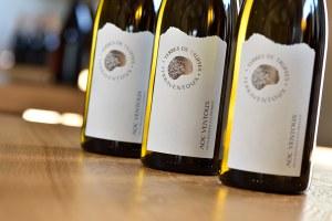Terres de Truffes White Wine 2018