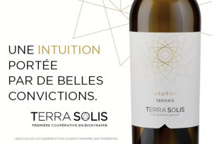 Intuition AOP Ventoux Terra Solis White Wine