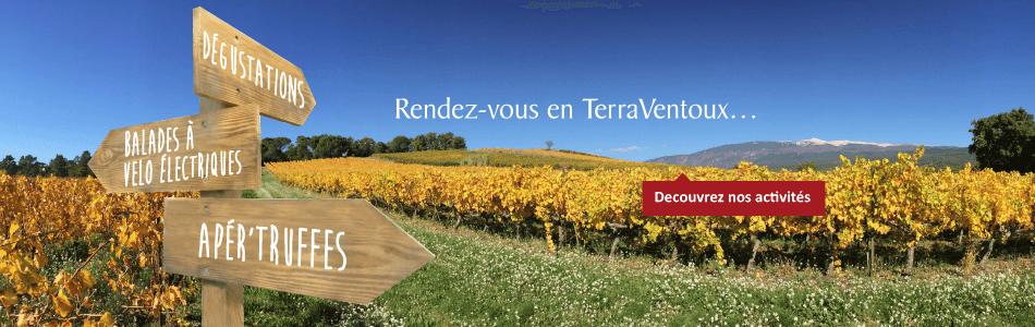 Oenotourisme - rendez vous en TerraVentoux