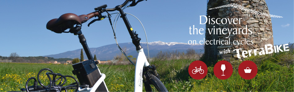 TerraBike - Discover the vineyards on electrical cycles